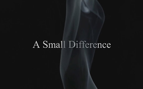 Raymond Plank - A Small Difference